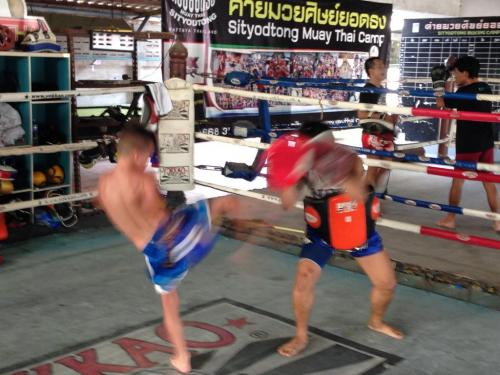 Brodie training at Sityodtong Thailand